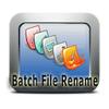 Bulk File Rename
